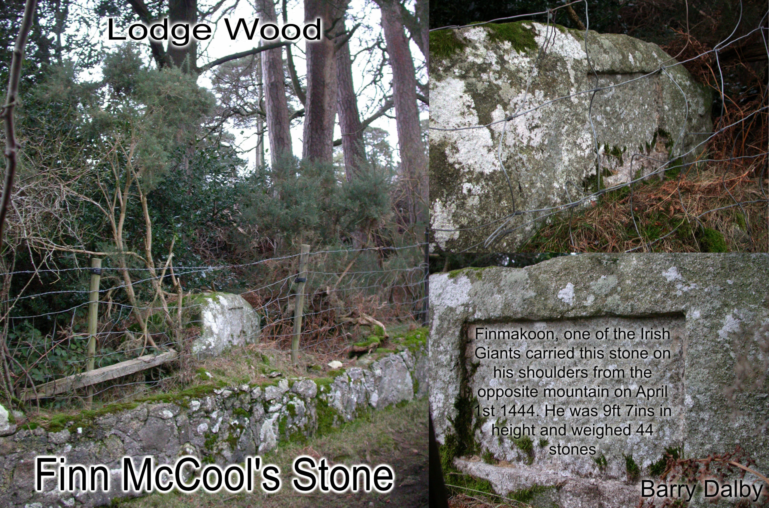 Finn McCool's Stone