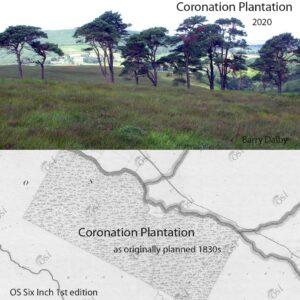 Coronation Plantation