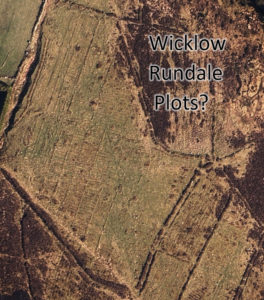 Rundale in Wicklow