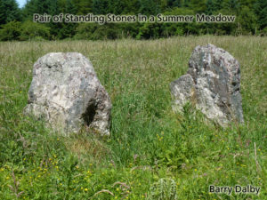 Standing Stones in a Meadow